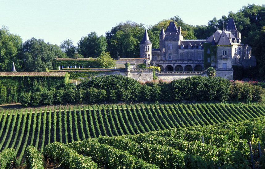 Бордо, виноградники