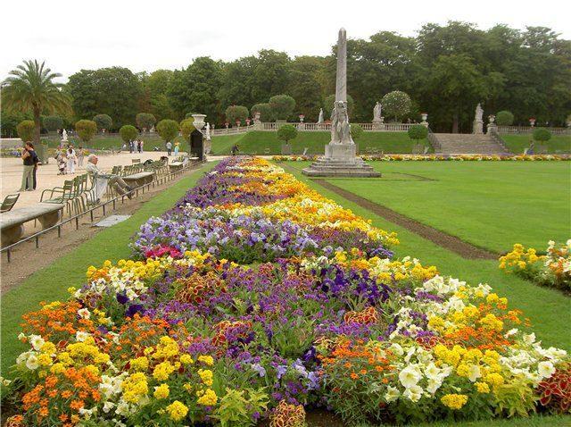 Цветы Люксембургского сада