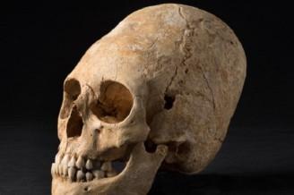 Во Франции обнаружено богатое захоронение с длинным черепом