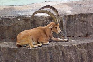 Национальный парк Пор-Кро